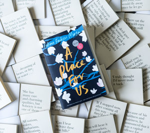 Book Review : A Place For Us By Fatima Farheen Mirza